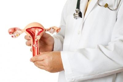 Миома матки: что это, признаки опухоли, симптомы и лечение