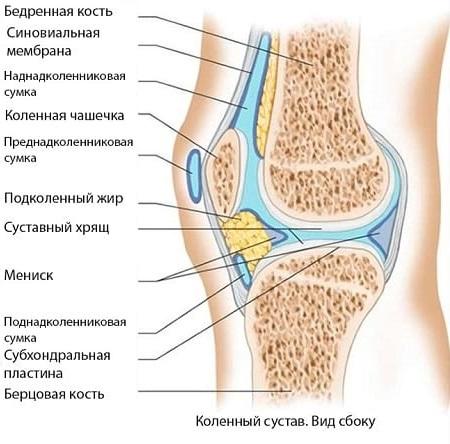 Лечение синовита и менисцит коленного сустава thumbnail