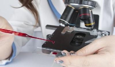 Завышены лейкоциты в крови у ребенка
