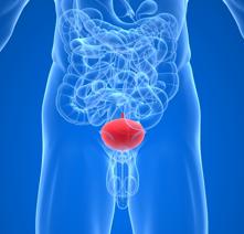 Везикулит: причины и симптомы заболевания. Методы лечения.