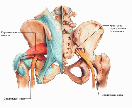 Лечение деформирующего артроза тазобедренных суставов второй стадии